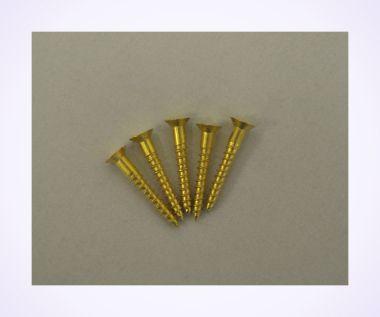 Size 6 Brass Wood Screws (pkt of 5)