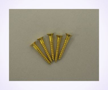 An image of Size 6 Brass Wood Screws (pkt of 5)