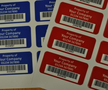 S/A Vinyl  Asset Labels Type 3 50mm x 25mm