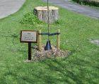 aluminium-memorial-tree-plaque