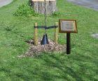 stainless-steel-tree-memorial-plaque