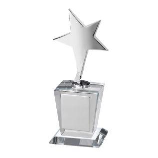 Star Award TZ019