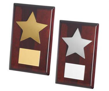 Star Award TZ011