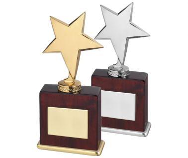 Star Award TZ005