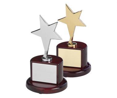 Star Award TZ006
