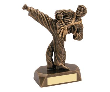 Martial Arts Trophies JR11-RF30