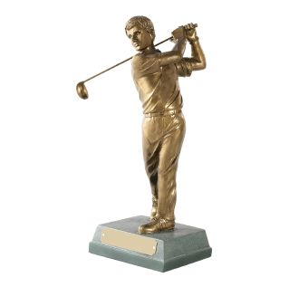 Male Golfer Completed Swing