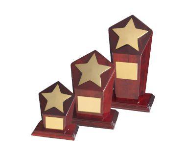 Star Award TZ009