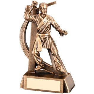 Male Martial Arts Trophies JR11-RF290
