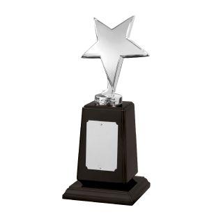 Star Award SZ040