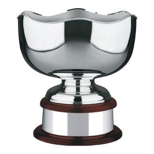 Silver Sports Bowl 453