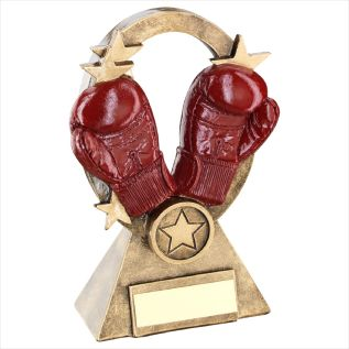 Boxing Trophies JR10-RF737
