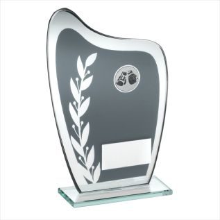 Glass Boxing Award JR10-TD929