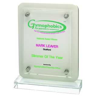 Printed Clear Glass/ White Wood Award GW30W