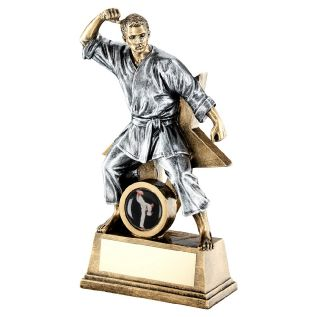 Male Martial Arts Trophies JR11-RF185