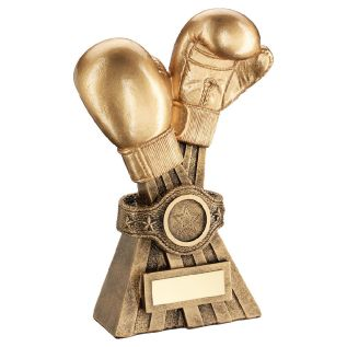 Boxing Trophies JR10-RF660
