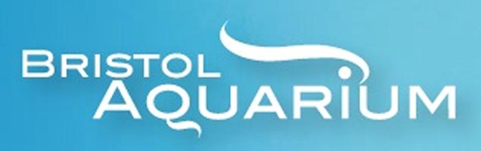 Bristol Aquarium Header