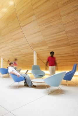 Large-Modern-Chair-Colour-Seating-Area