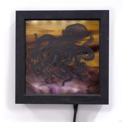 octopus edited