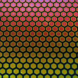Crinklized Honeycomb 1 on Thin Black