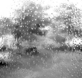 Spectrum Textured - Clear Rainwater