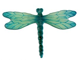 dragonfly casting1