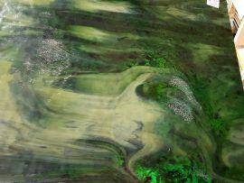 """Uroboros SG - Forest Park 12"""" x 10"""""""