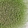 Olive Green Transparent - System 96 Frit