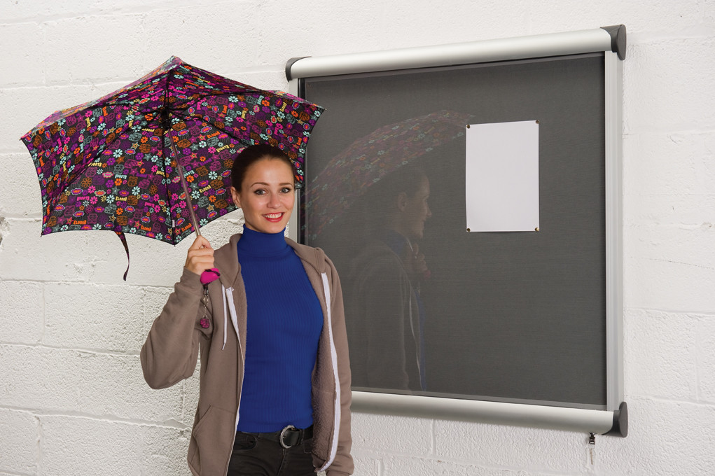 An image of PV Outdoor Lockable Showcase - Outdoor Noticeboards