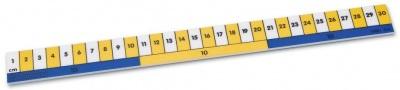 Classmaster Early Learning Ruler