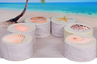 Set Of 6 Shell Buffets With Playmat Nature Scene