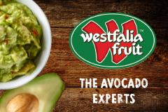 Westfalia Sm Side on all websites (May18)