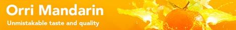 Orri Running Committee-ORC (FPJ Website Position 2)