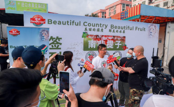 South Africa grape event China 2021 interviews