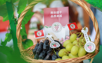 South Africa grape event China 2021 basket of grapes