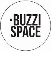 Buzzi Text logo small text