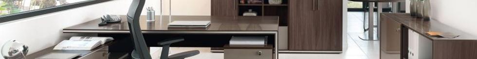 Maddox Executive Furniture for sale