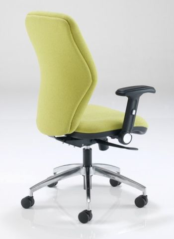 Aero Ergonomic Office Chair Rear View