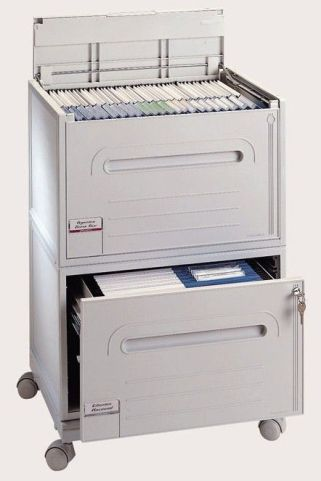 Organi Two Drawer Mobile Cabinet