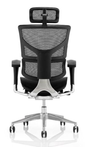 Dynamo All Mesh Task Chair Rear View