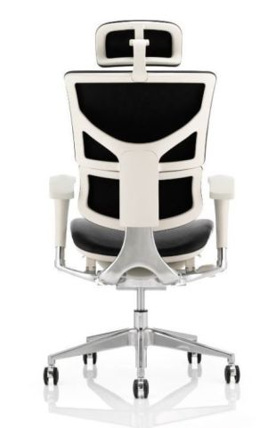Dynamo Leather Task Chair Grey Frame Rear View