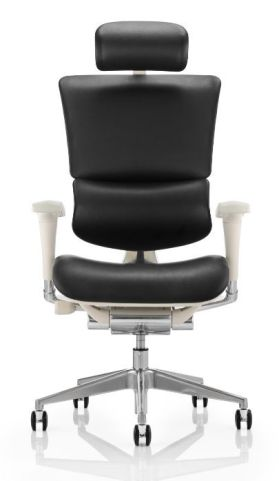 Dynamo Leather Task Chair With A Grey Frame