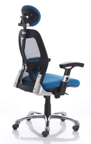 Ergo Stra In Blue Rear Angle