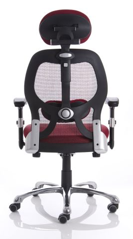 Ergo Star Red Mesh Chair Rear View