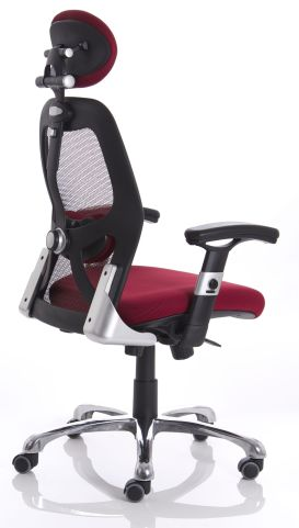 Red Ergo Star Chair Rear Angle