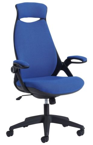 Travis Ergonomic Task Chair In Blue Fabric Front Angle