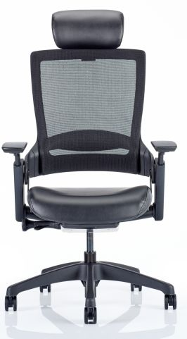Lotus Mesh Task Chair With A Leather Seat And Head Rest Front View
