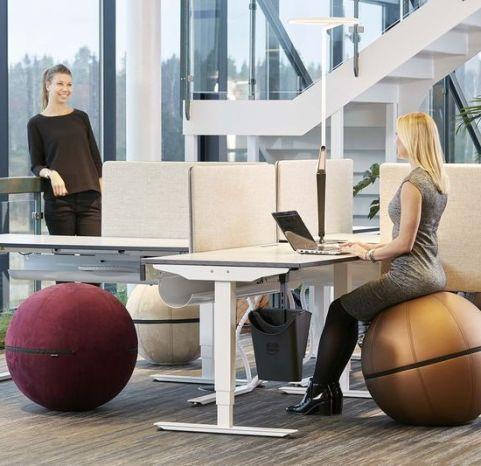 Gotessons Office Ballz 7 KvC291b Jpg 800x2000 Q80