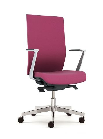 Kind Executive Chair With Fixed Alumium