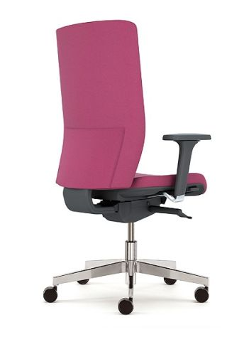 Kind Executive Chaor With Adjustable Arms